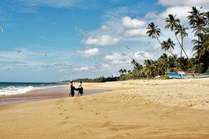 SkyUp открывает рейс на Шри-Ланку