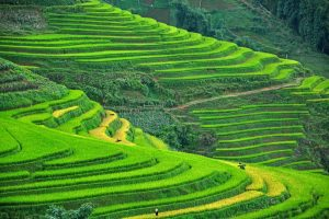 Горящие туры во Вьетнам от 828 € с человека!