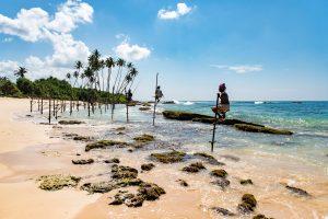 Пакетные туры на Шри-Ланку от 364 € с человека!