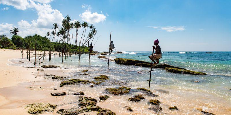 Шара! Пакетные туры из ОДЕССЫ на Шри-Ланку от 323 € с человека!