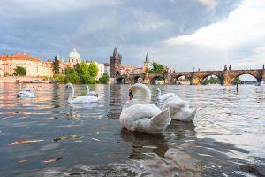 Горящие туры в Прагу от 125 € с человека